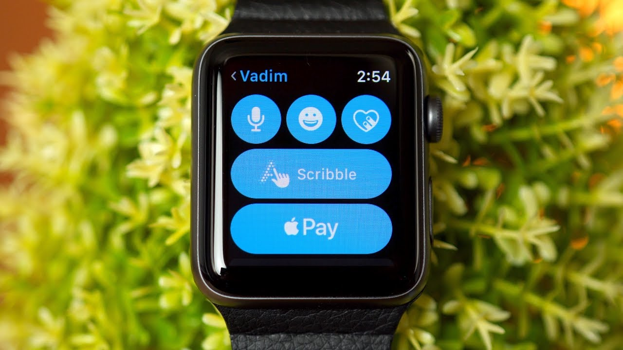 Apple Pay On Your Apple Watch